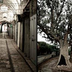 Old City, Jerusalem / Jericho